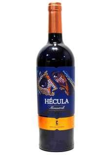 Rödvin Hécula