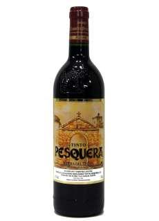 Rödvin Remírez de Ganuza